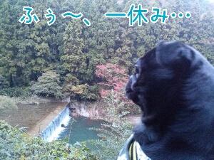 fc2_2013-11-17_19-48-19-722.jpg