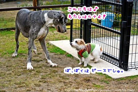 140204_yuasa.jpg