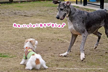 140204_yuasa1.jpg