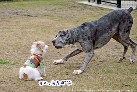 140204_yuasa2.jpg