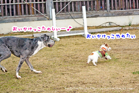 140204_yuasa3.jpg