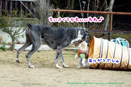 140204_yuasa4.jpg