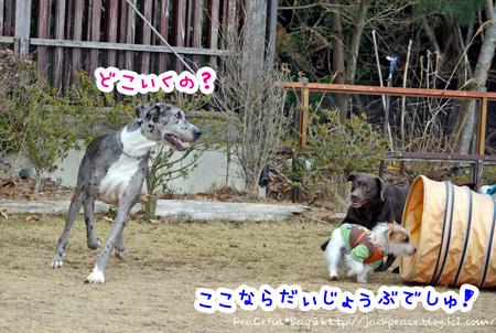 140204_yuasa5.jpg