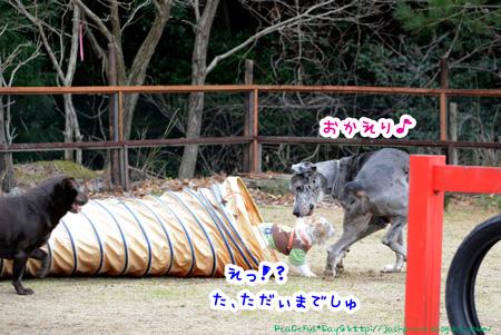 140204_yuasa6.jpg