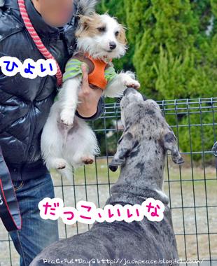 140204_yuasa7.jpg