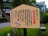 西武飯能駅 ザクロの木 説明