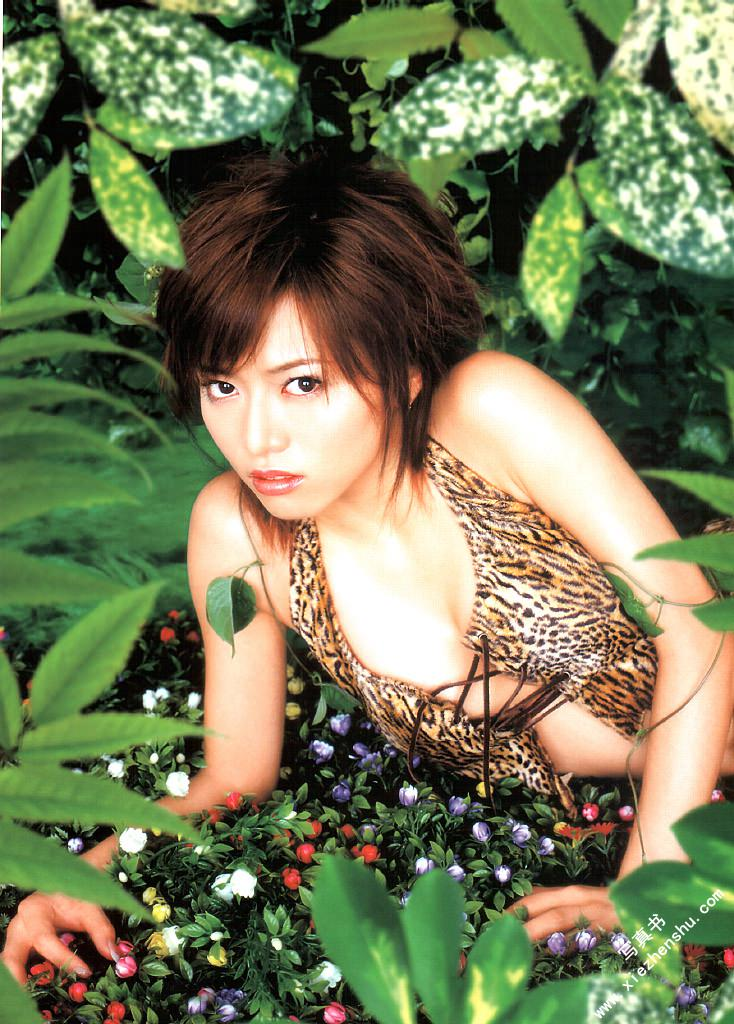 syaku768106105.jpg