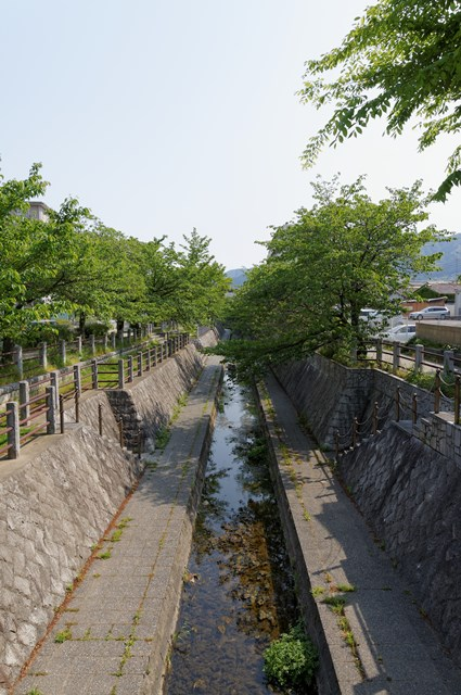 公団堤団地脇の一本松川