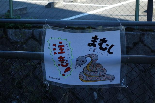 大阪府公社星田団地のマムシ注意張り紙