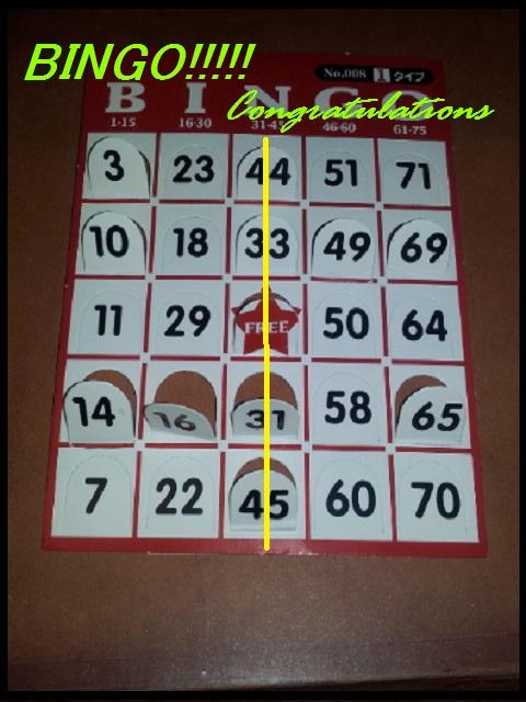 bingo11.jpg