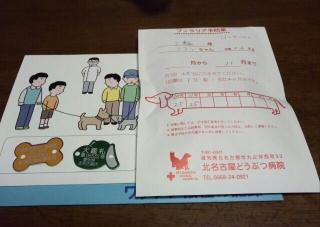 moblog_29d63277.jpg