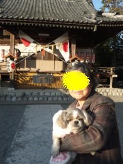 moblog_57cdff20.jpg
