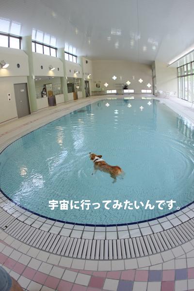 AF5J9467.jpg