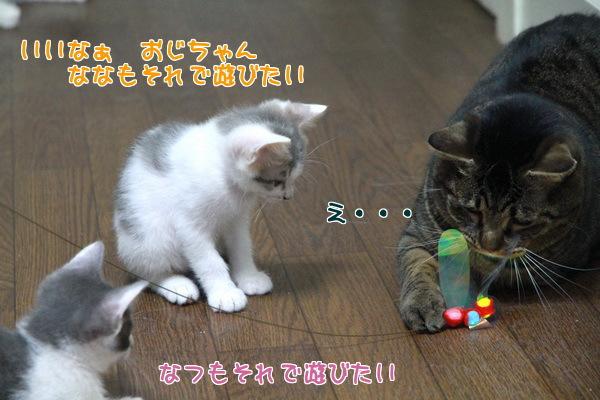 20130918194109a46.jpg