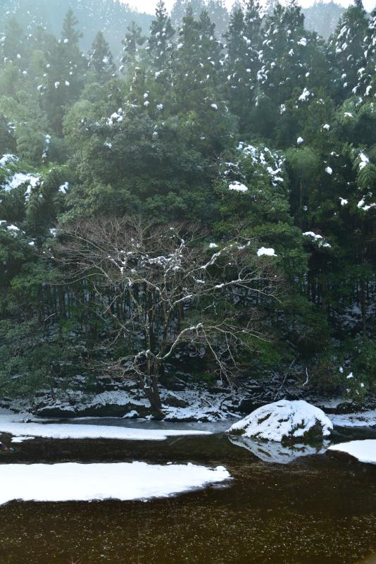 「雪の貞光川」