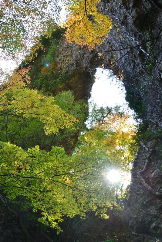 石門洞の紅葉1 (香川県 小豆郡 小豆島)