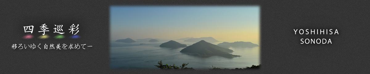四季巡彩 - 移ろいゆく自然美を求めて- 園田義久