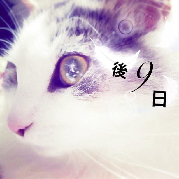 fc2blog_20131216033054c41.jpg