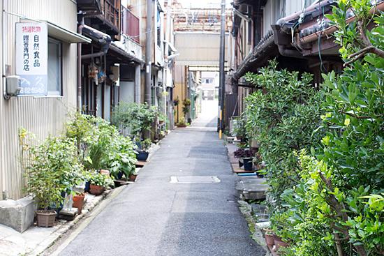 瀬戸歩き-1