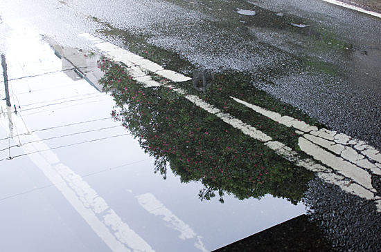 雨の日-9