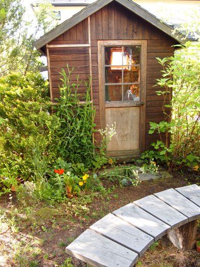 my-garden 018 (4)