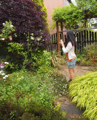 my-garden 146