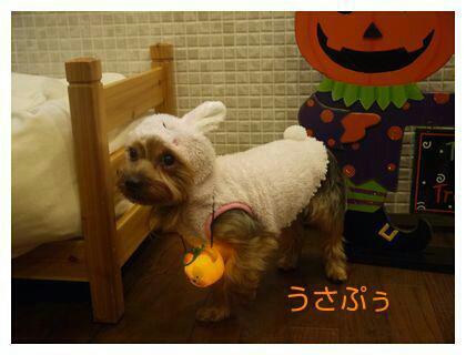 fc2_2013-10-22_04-26-15-703.jpg