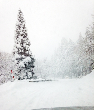 proty-snow-pow.jpg