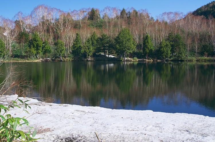 志賀高原 雪景色 1