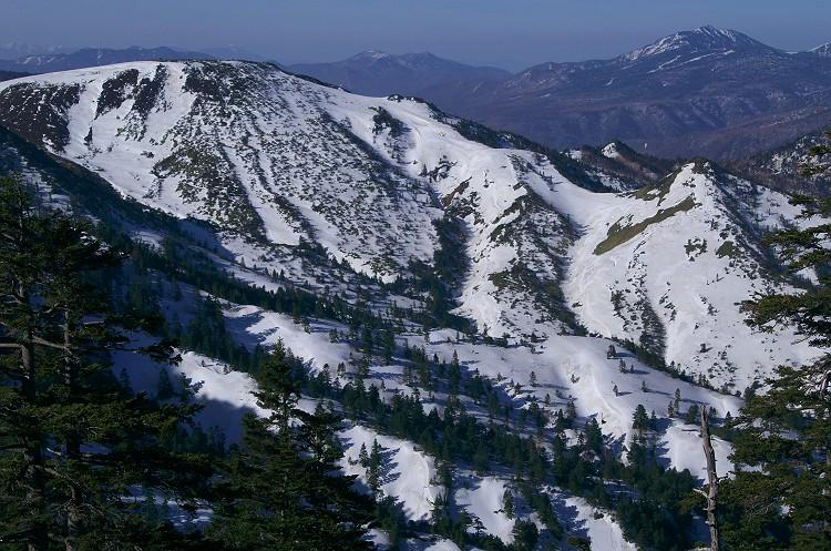 志賀高原 雪景色 2