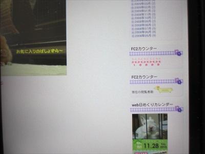 IMG_9356_R.jpg