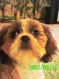 2003_0315_032301-GRP_0079_convert_20130706154249.jpg
