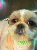 2003_1201_234938-GRP_0094.jpg