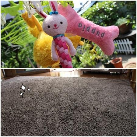 おもちゃは洗濯&絨毯も交換よ~