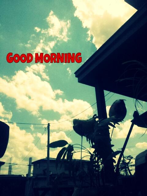 PicsArt_1374245481994.jpg