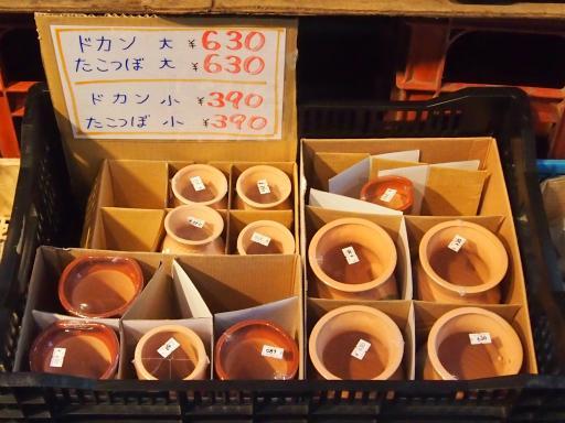 20130811・阿佐ヶ谷七夕ビミョー09