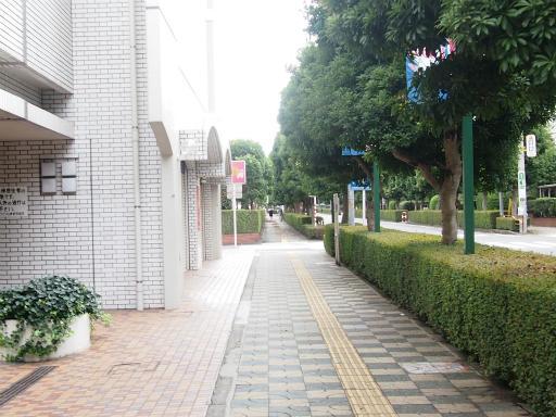 20130916・小手指散歩3-03