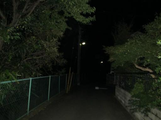 20130919・十五夜6