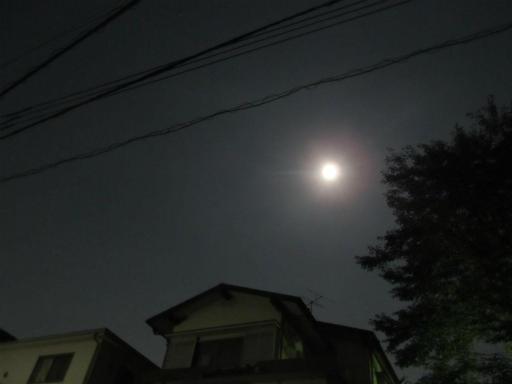 20130919・十五夜4