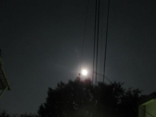 20130919・十五夜1