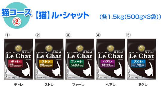 2013090120580906c.jpg
