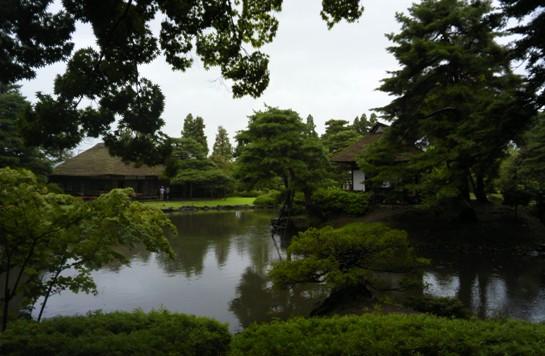 御薬園3どこか霊感漂う、気の良いところ。木がすばらしい
