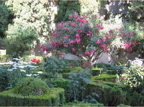 パルタルの庭園 まさに花の競演