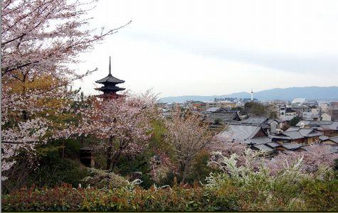 京で極めるハンサムウーマンライフ